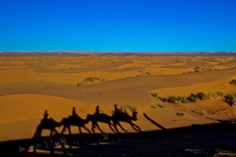 Sahara Ready-7 copy