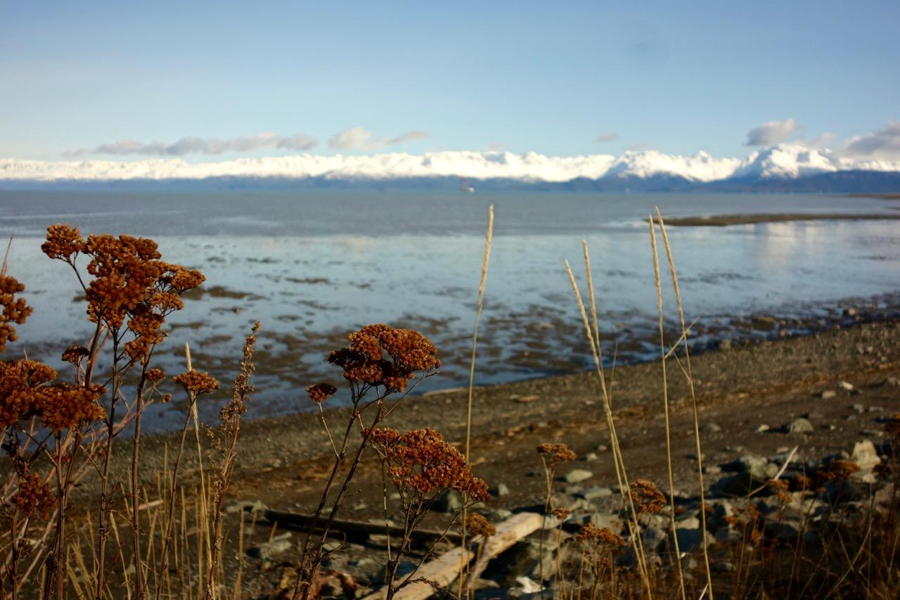 Homer Alaska Kenai Range