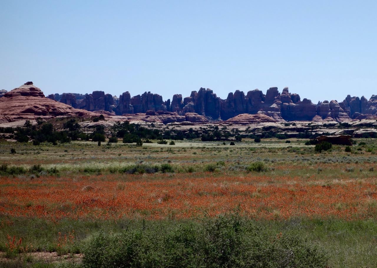 Needles Canyonlands Utah
