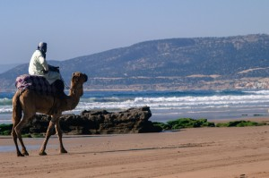 Riding along the beach in Aourir north of Agadir