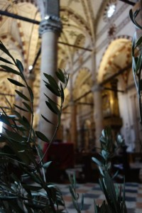 Olive branches on Good Friday
