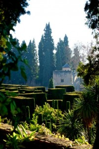 Geometry meets nature at the Alhambra gardens