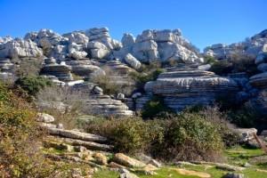 Monumento Natural el Tornillo del Torcal