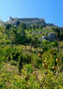 Pomegranite-laden hillsides