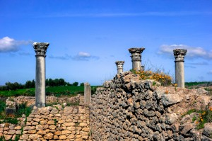 Lovely Corinthian columns decorate Volubilis
