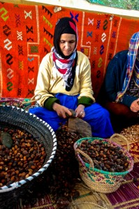Grinding argan nuts for edible and topical oils